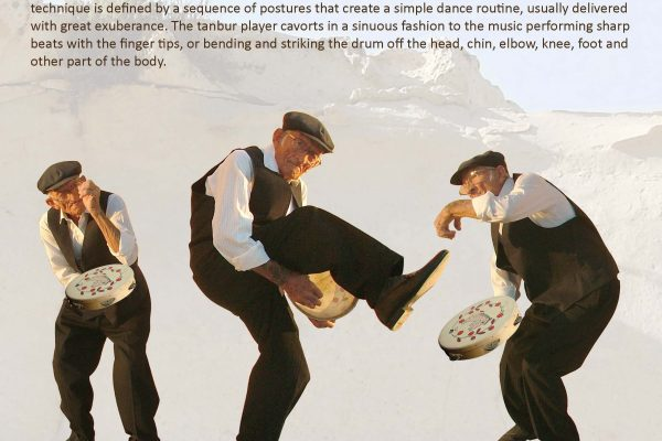 Brochure pg. 2